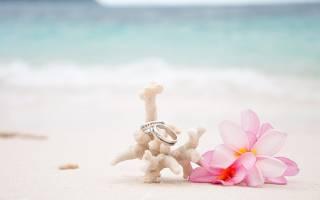 «Что дарят на годовщину 35 лет – коралловую свадьбу[