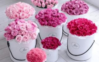 «Свадебный букет невесты – с чем сочетать пионовидные розы[