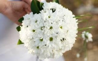 Свадебный букет из хризантем, фото букетов невесты с хризантемами
