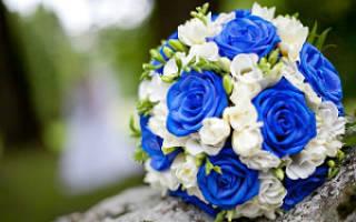 «Выбираем вместе самостоятельно букет невесты в синем цвете[